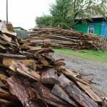 Власти Карпинска будут штрафовать людей за мусор