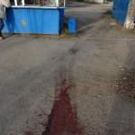 Карпинский боксер до смерти избил 40-летнего мужчину. Убийство произошло сегодня