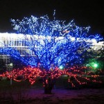 В Волчанске ищут тех, кто лучше всех «украсится» к Новому году