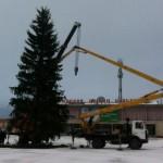 На площади Карпинска установили новогоднюю елку