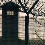 Суд приговорил подсудимого к максимально возможному сроку – 9 лет 6 месяцев лишения свободы