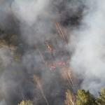 Лесные пожары в Карпинске и Волчанске могут начаться в конце апреля