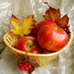 «Золотая осень» придет к садоводам Карпинска