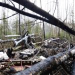 В Серове найден пропавший почти год назад Ан-2. В восьми километрах от города
