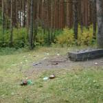 В Комсомольском парке убили молодого мужчину. Среди подозреваемых школьник