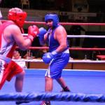 В Карпинске пройдет турнир по боксу