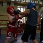 В Карпинске прошел областной турнир по боксу