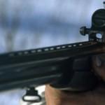 Житель Карпинска осужден за незаконную охоту на лося