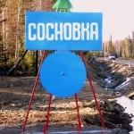В поселке Сосновка обнаружен труп пожилого мужчины