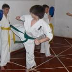 Карпинскому клубу каратэ киокушинкай исполнится 12 лет