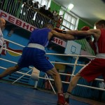 В Волчанске прошел чемпионат Свердловской области по боксу (ВИДЕО)