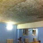 В одной из карпинских саун плесень на потолкеи «цветущая» вода в бассейне
