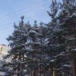 Южная часть Карпинска полдня оставалась без тепла