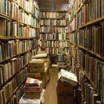 В карпинскую библиотеку поступили новые книги