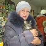 В Карпинске приют для животных проводит акцию