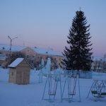 Елка на площади Карпинска будет стоять до 20 февраля