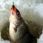 В Карпинске пройдут соревнования рыболовов