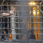Под амнистию в Свердловской области попадут около 6 тысяч человек