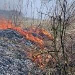 В Карпинске все чаще горит сухая трава