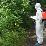 В Карпинске продолжается акарицидная обработка от клещей