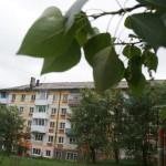 В Карпинске сильный ветер оборвал провода