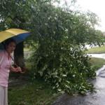 Прогноз на 30 июня: возможны грозы, дождь и ветер