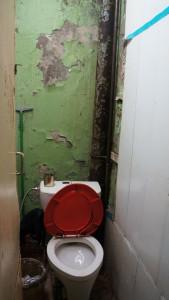 Дети жильцов отказываются ходить в мокрый и страшный санузел
