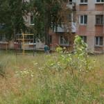 Пьяные качели. Обустройства детских площадок в Карпинске не будет - денег на это нет