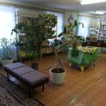 Карпинская библиотека приглашает на выставки и детей и взрослых