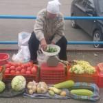 В Карпинске пройдет выставка достижений садоводов