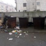 В Карпинске численность безнадзорных собак отрегулируют