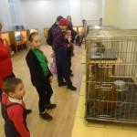 Ребятишки с неподдельным любопытством смотрели на диковинных зверей