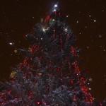 В этом году елка действительно шикарная