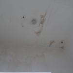 Будут ли работать пожарные извещатели на влажном потолке?