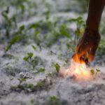В Карпинске пожарные выезжают на тушение пуха