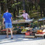 Роспотребнадзор: разрезанные дыни и арбузы продавать запрещено!
