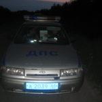 На автодороге Серов-Карпинск водитель из Североуральска сбил лосиху