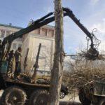Карпинск: тополя пилят - света не жди. Новые адреса отключений