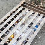 Водопропускные канавы просят очистки