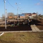 Вычесать газон, убрать войлок и полить кусты.