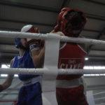 В боксе существует четыре основных удара: джеб, кросс, хук и апперкот