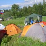 Муниципальные заботы в Карпинске: дороги, собаки, трава