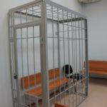 В Карпинском суде огласят приговор «сержанту» Бабаеву