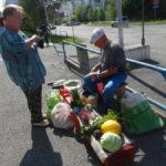 Торговать или нет урожаем бабушкам на улице? Дума Карпинска обсудит
