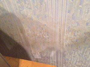 Из-за постоянной сырости на стене начал появляться грибок