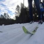 Карпинцы выступили на первенстве области по лыжным гонкам